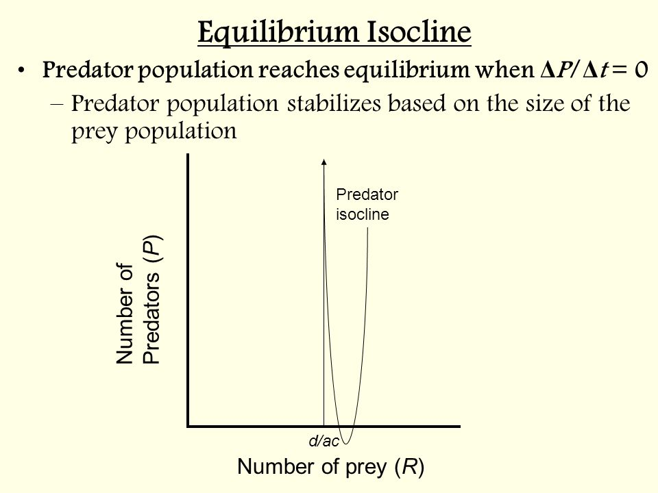 Equilibrium Isocline Predator population reaches equilibrium when ΔP/Δt = 0. Predator population stabilizes based on the size of the prey population.