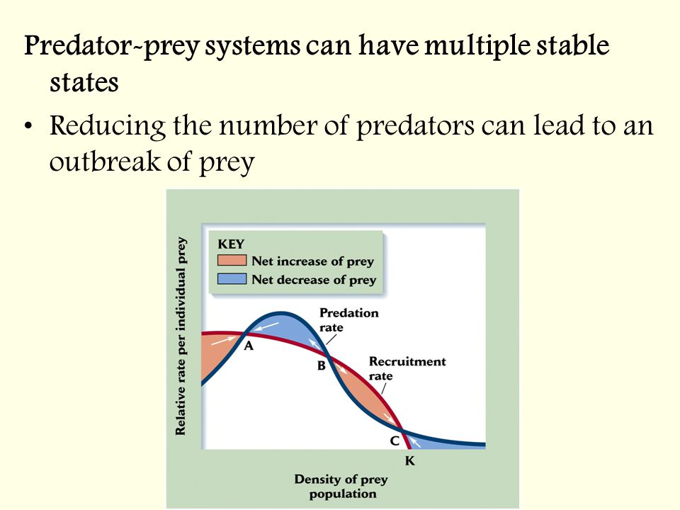 Predator-prey systems can have multiple stable states