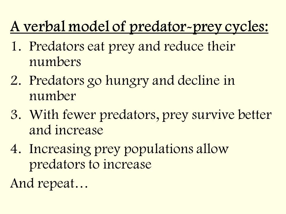 A verbal model of predator-prey cycles: