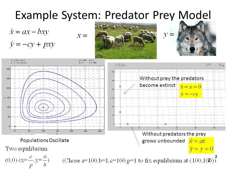 Example System: Predator Prey Model