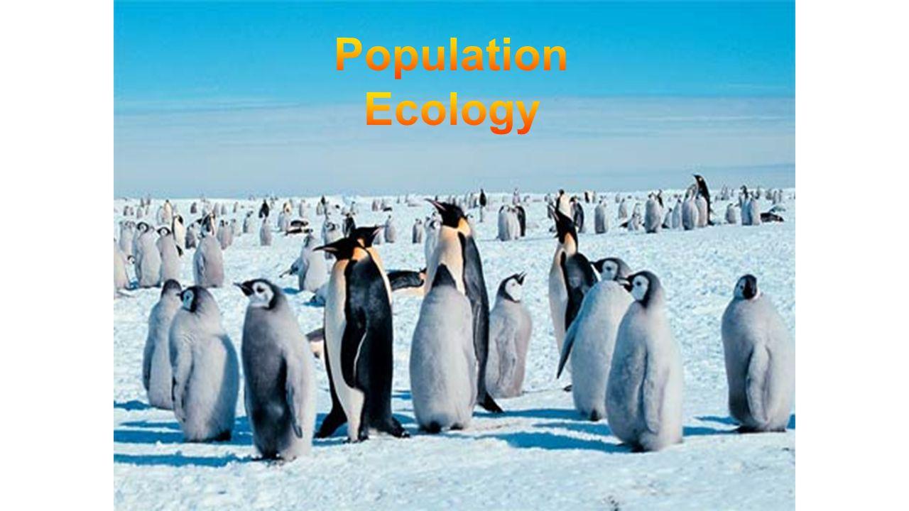 pretest unit 3  population ecology