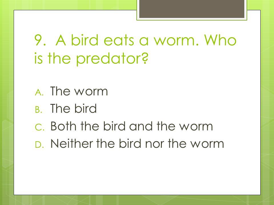 9. A bird eats a worm. Who is the predator