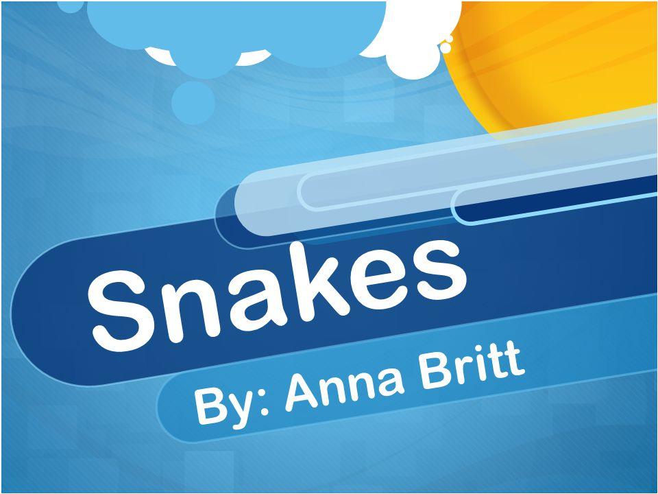 Snakes By: Anna Britt