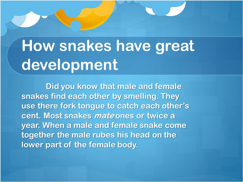 How snakes have great development