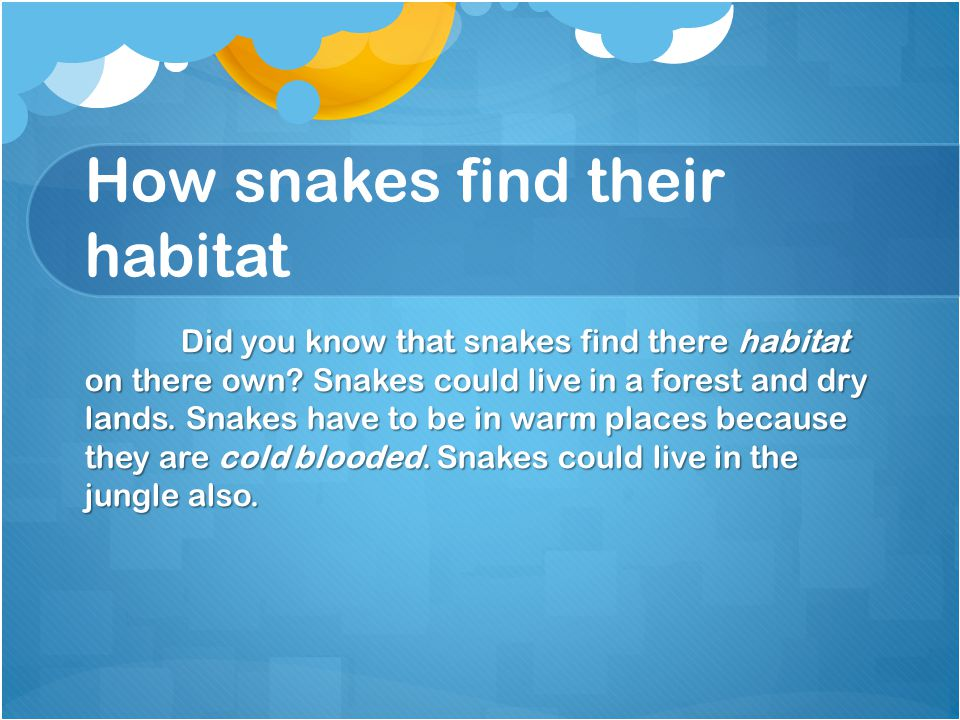 How snakes find their habitat