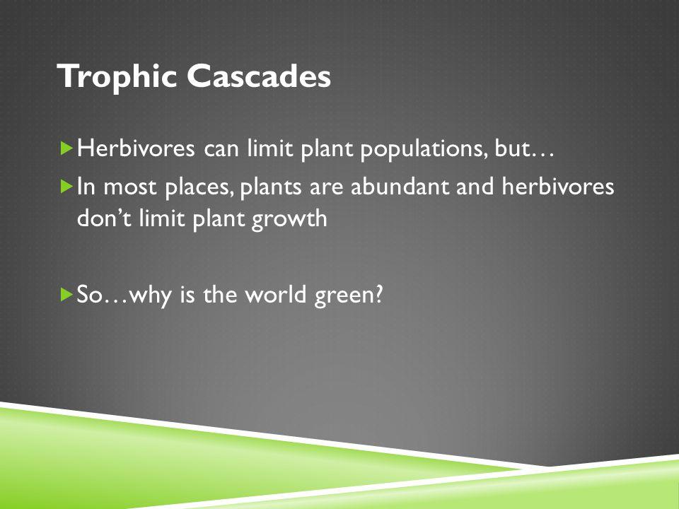 Trophic Cascades Herbivores can limit plant populations, but…