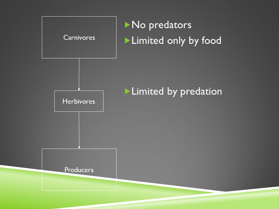No predators Limited only by food Limited by predation Carnivores