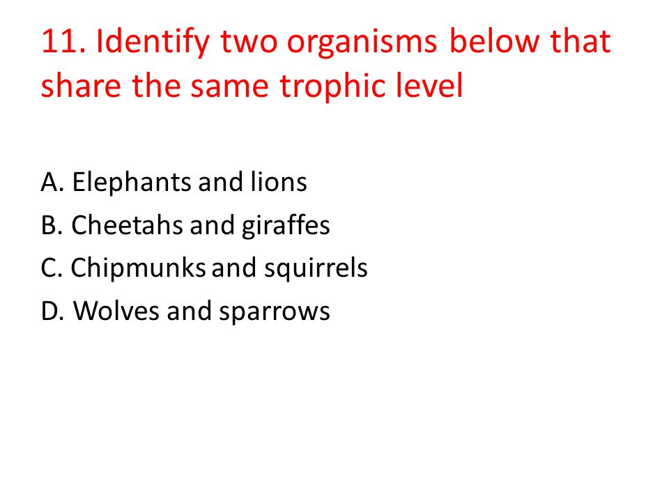 11. Identify two organisms below that share the same trophic level