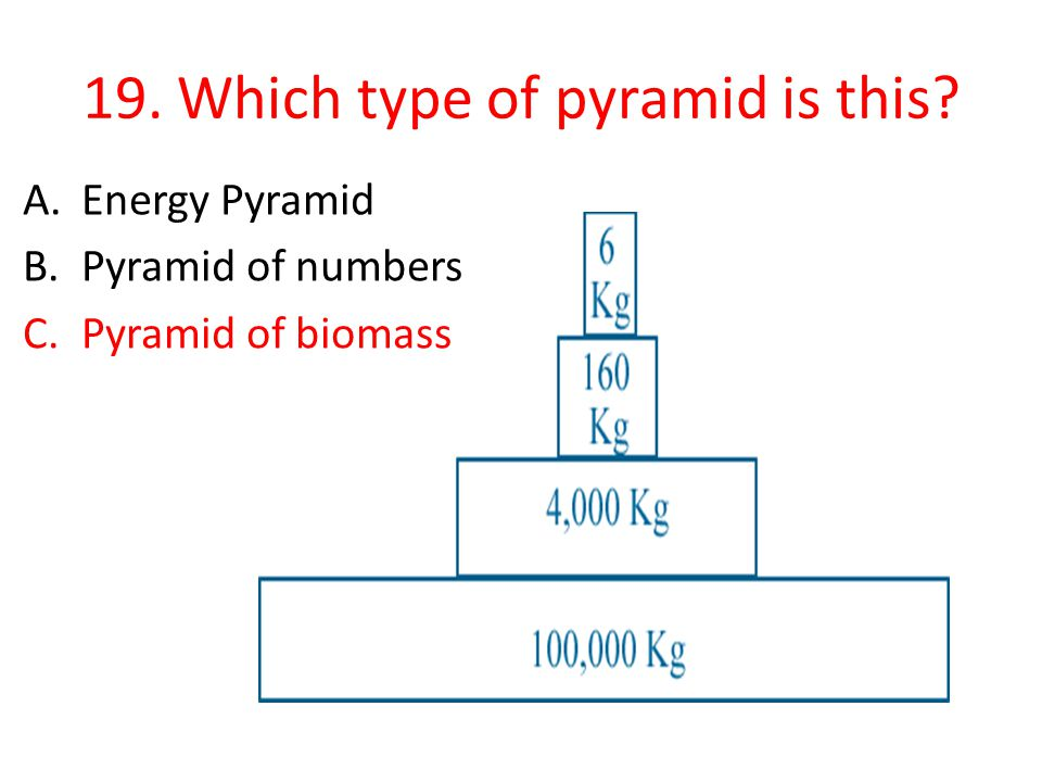 19. Which type of pyramid is this