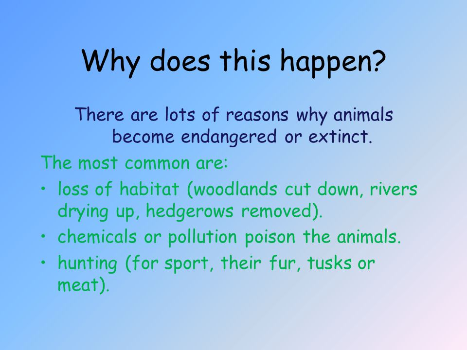 There are lots of reasons why animals become endangered or extinct.