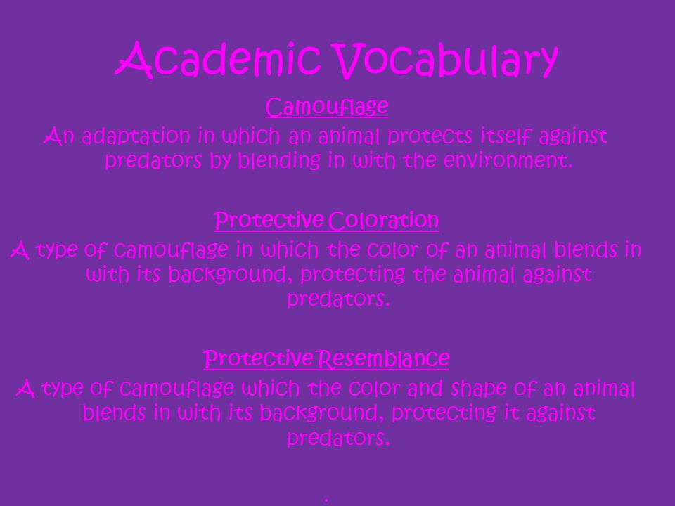 Academic Vocabulary Camouflage