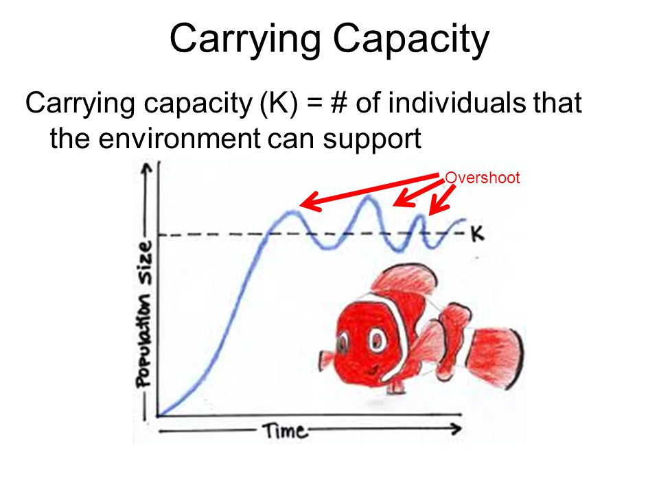 Carrying Capacity Carrying capacity (K) = # of individuals that the environment can support.