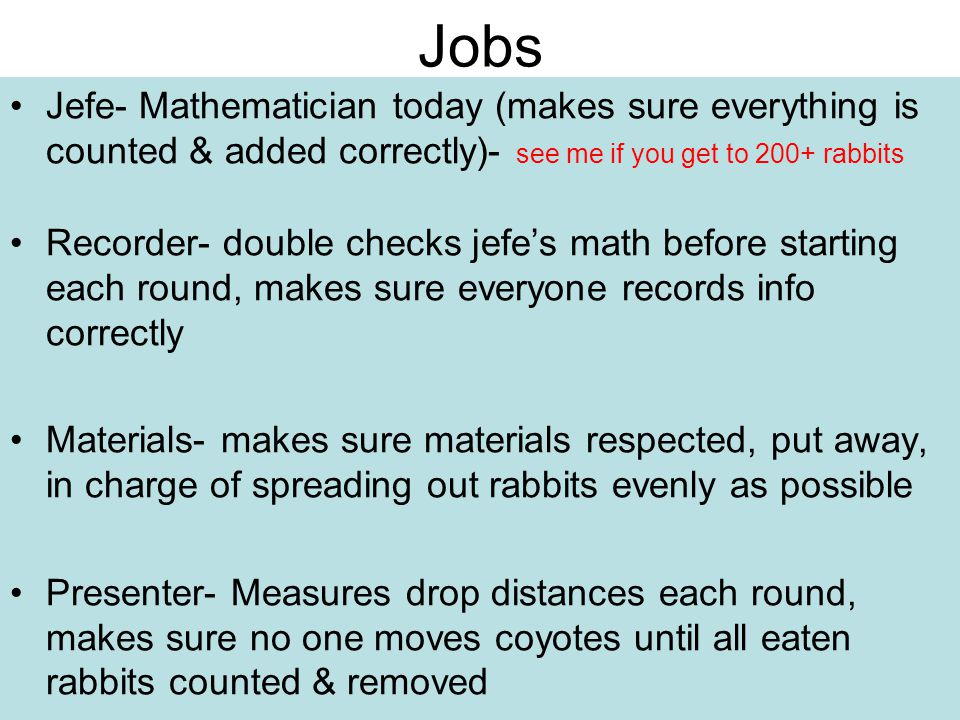 Jobs Jefe- Mathematician today (makes sure everything is counted & added correctly)- see me if you get to 200+ rabbits.