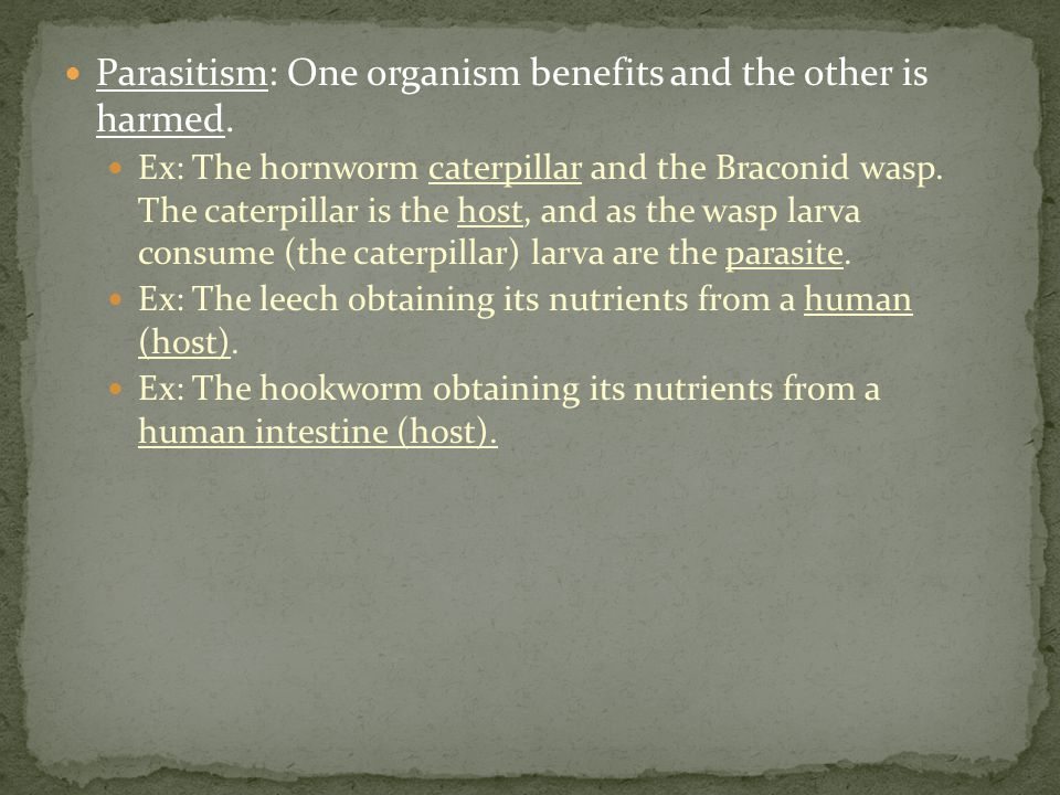 Parasitism: One organism benefits and the other is harmed.