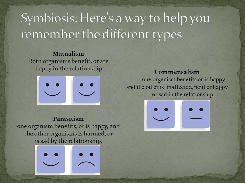 Symbiosis: Here's a way to help you remember the different types