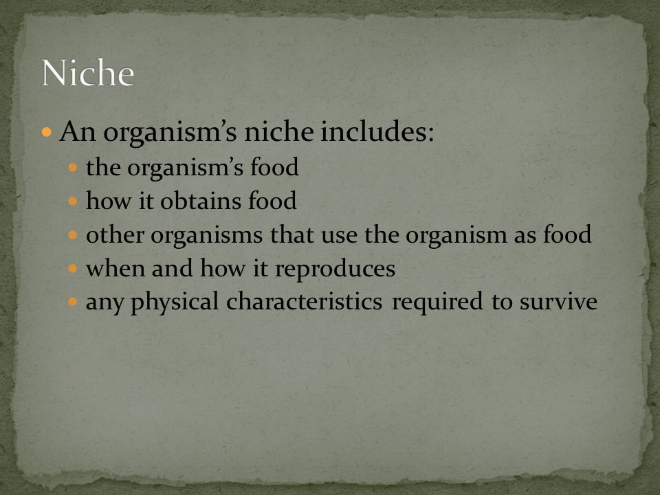 Niche An organism's niche includes: the organism's food