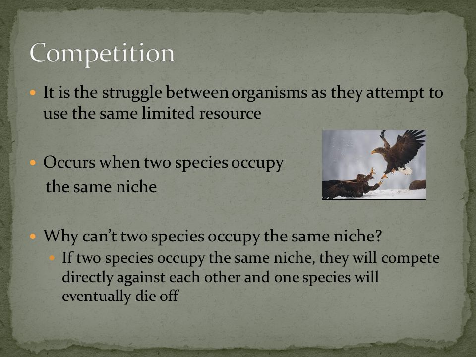 Competition It is the struggle between organisms as they attempt to use the same limited resource.