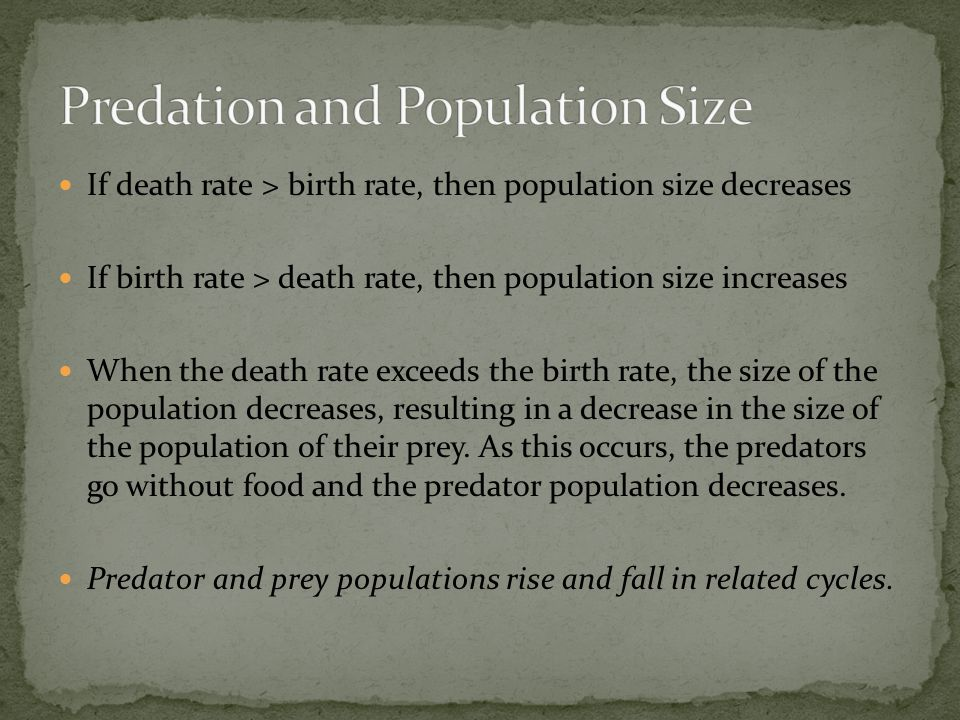Predation and Population Size