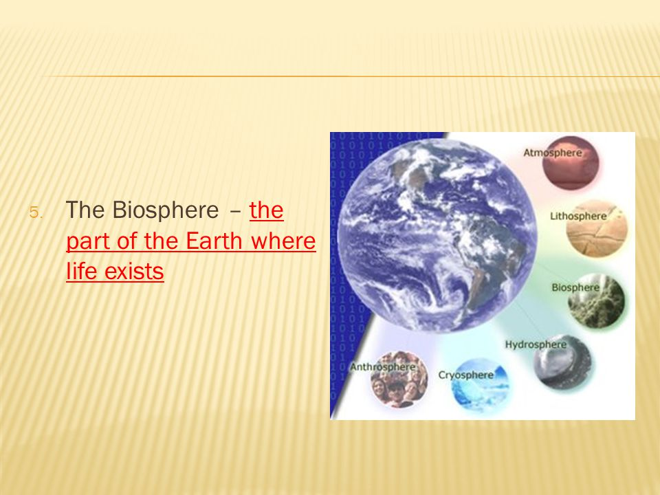 The Biosphere – the part of the Earth where life exists