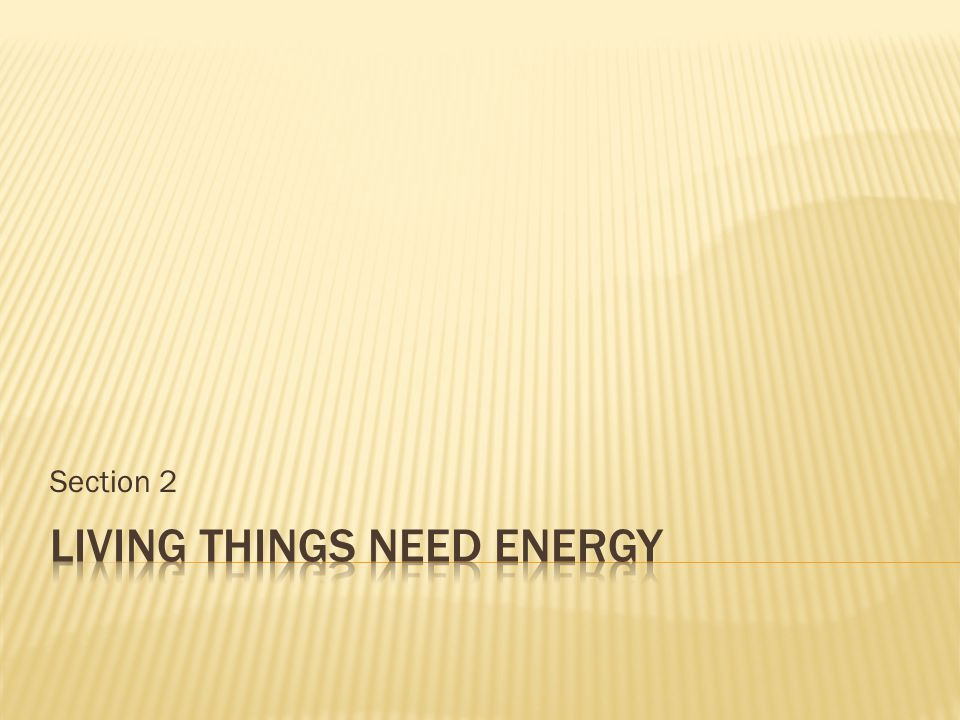Living Things Need Energy