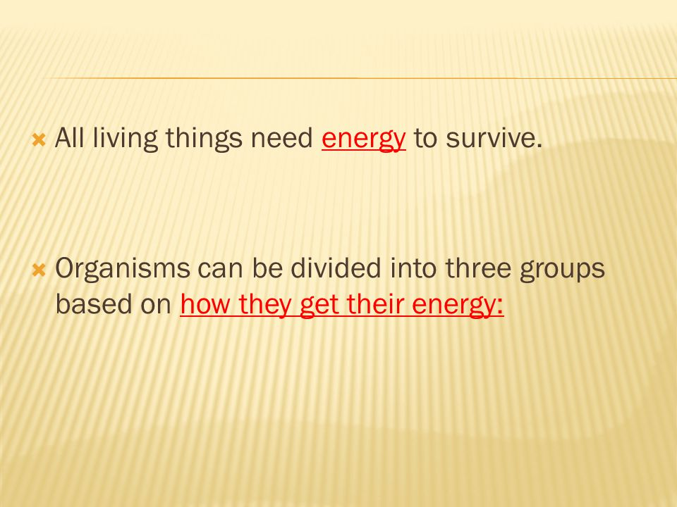 All living things need energy to survive.