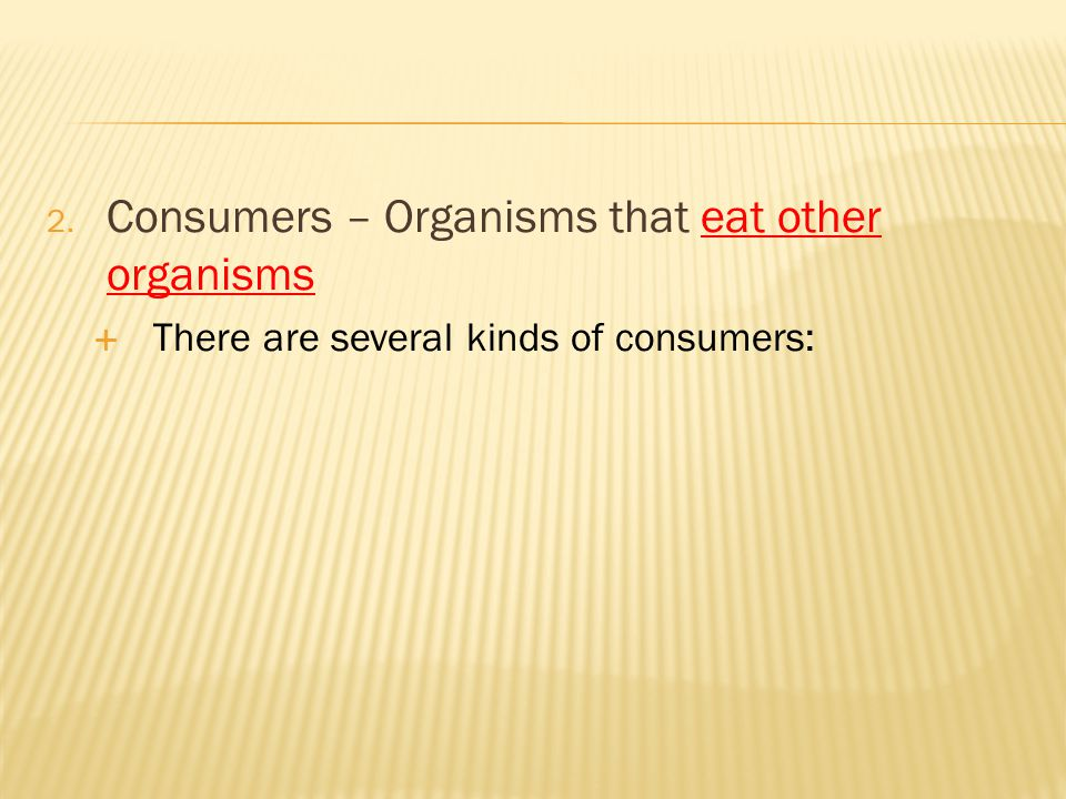 Consumers – Organisms that eat other organisms