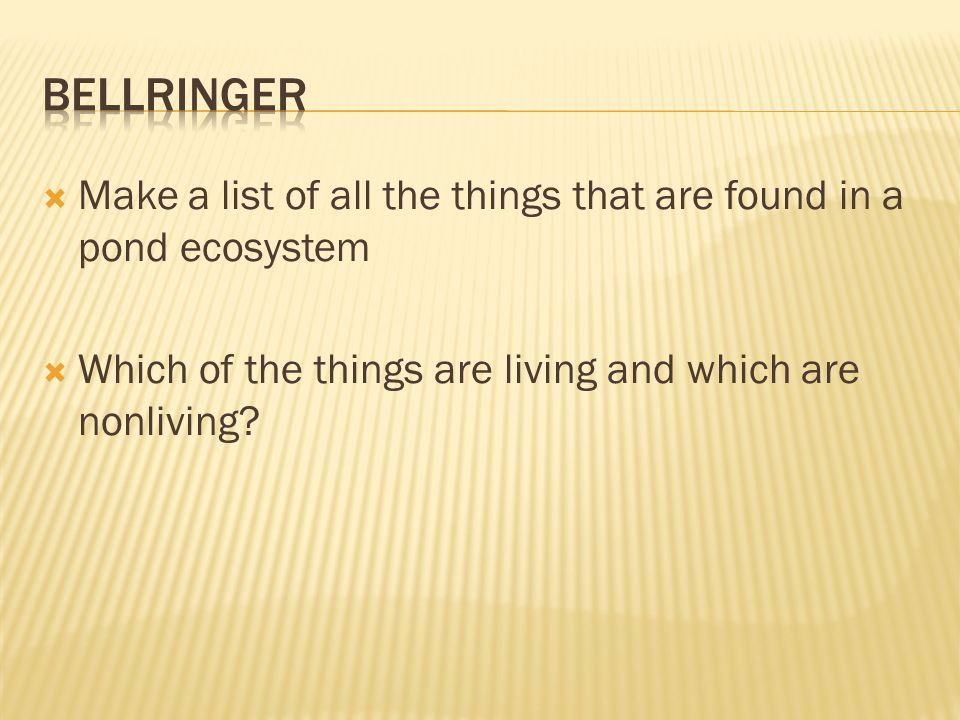 Bellringer Make a list of all the things that are found in a pond ecosystem.
