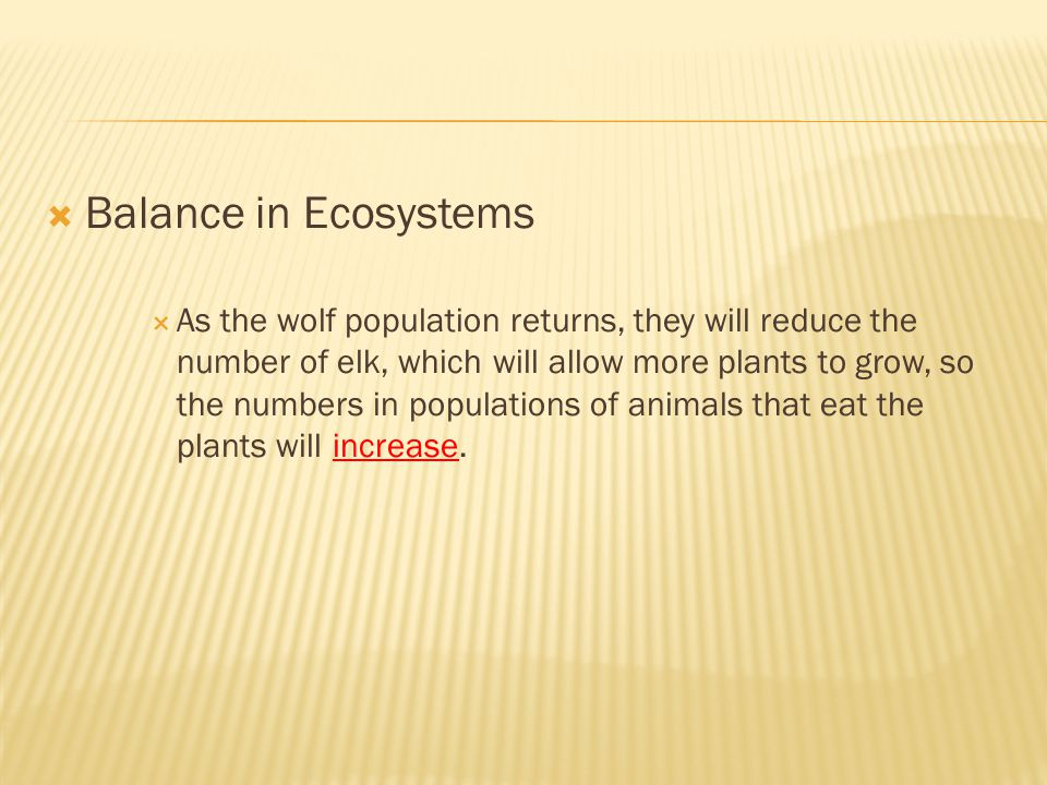 Balance in Ecosystems