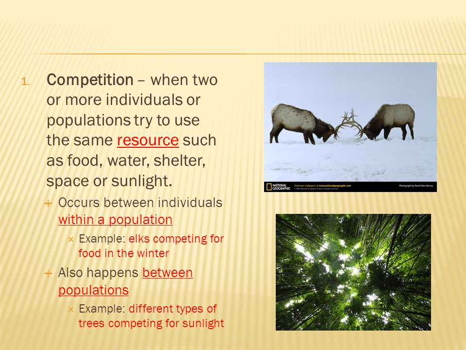 Competition – when two or more individuals or populations try to use the same resource such as food, water, shelter, space or sunlight.