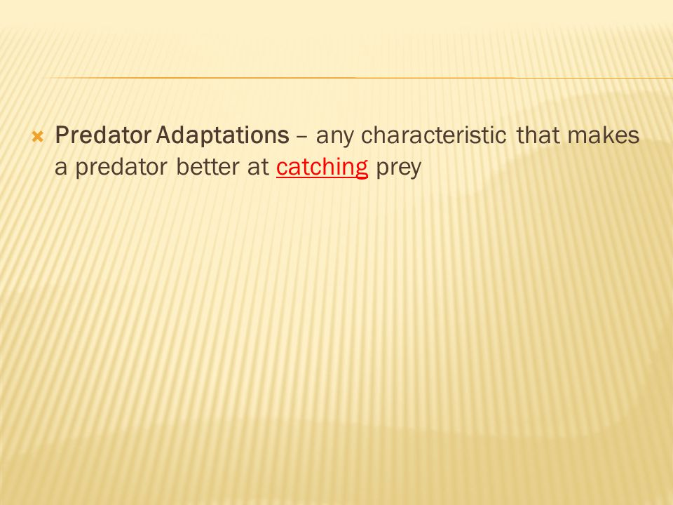 Predator Adaptations – any characteristic that makes a predator better at catching prey
