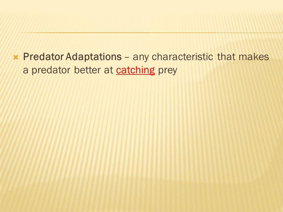 Predator Adaptations – any characteristic that makes a predator better at catching prey