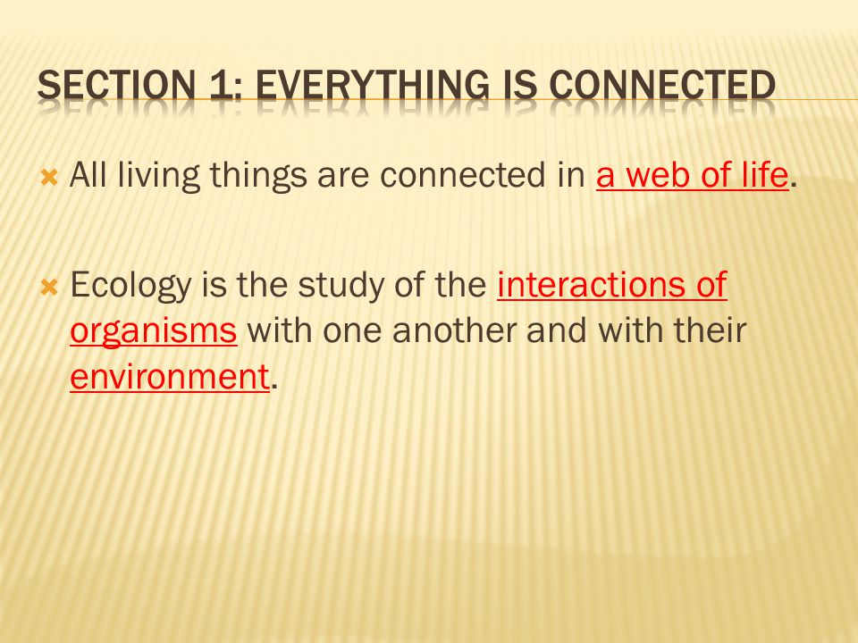 Section 1: Everything is Connected