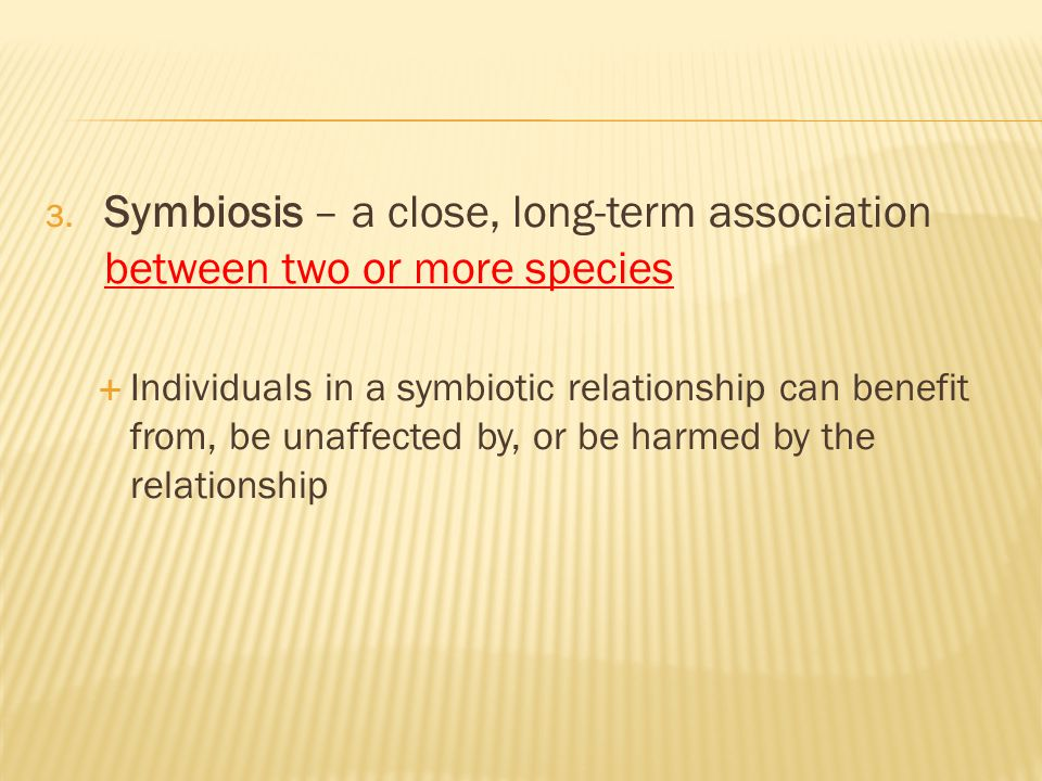 Symbiosis – a close, long-term association between two or more species