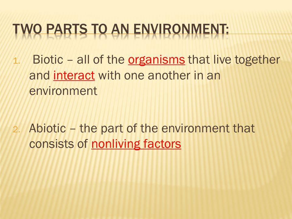 Two Parts to an Environment: