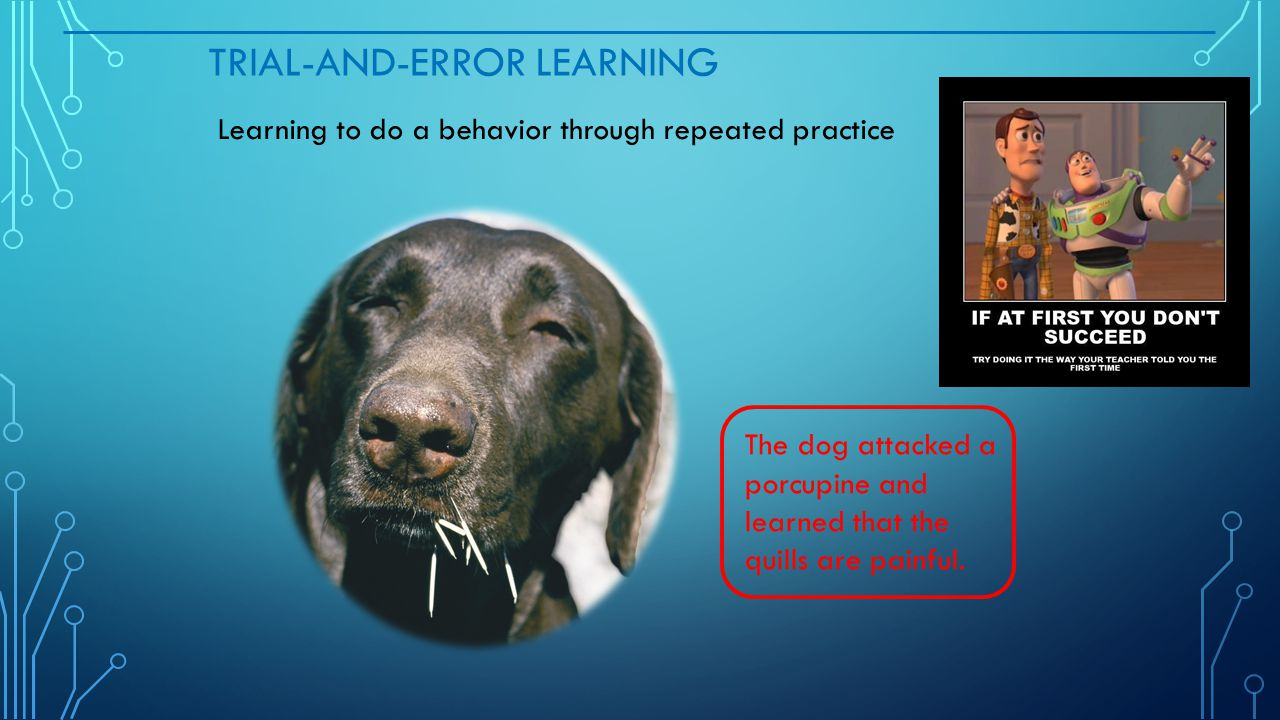 Trial-and-Error Learning