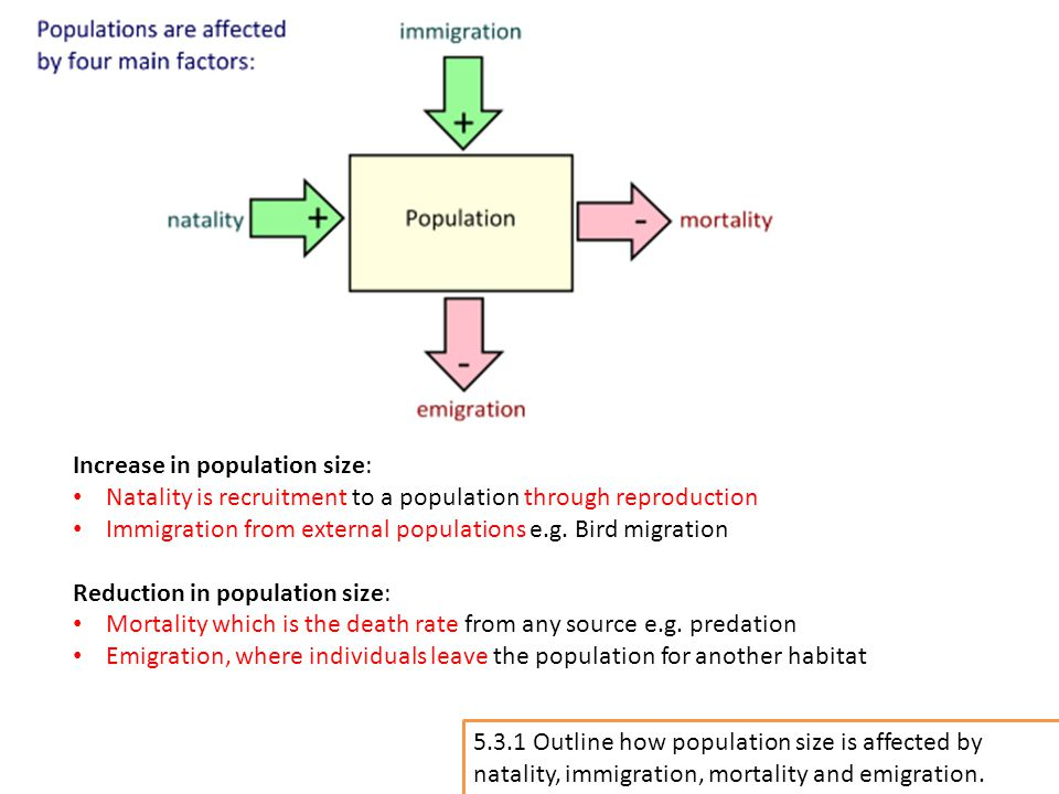 Increase in population size: