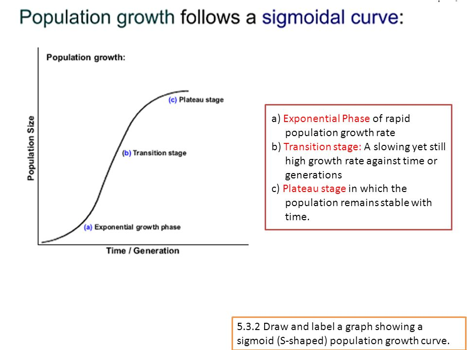 a) Exponential Phase of rapid population growth rate