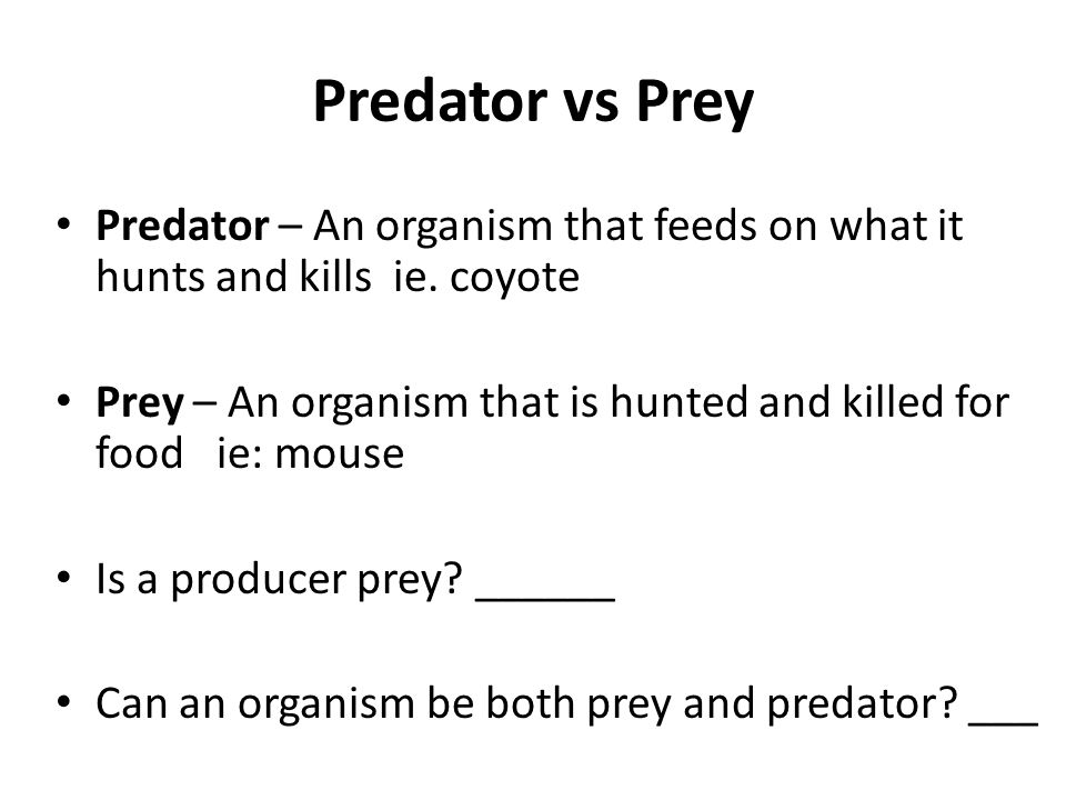 Predator vs Prey Predator – An organism that feeds on what it hunts and kills ie. coyote.