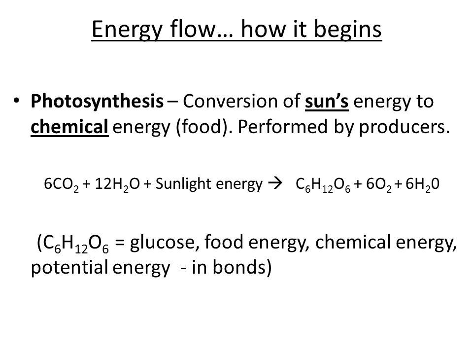 Energy flow… how it begins