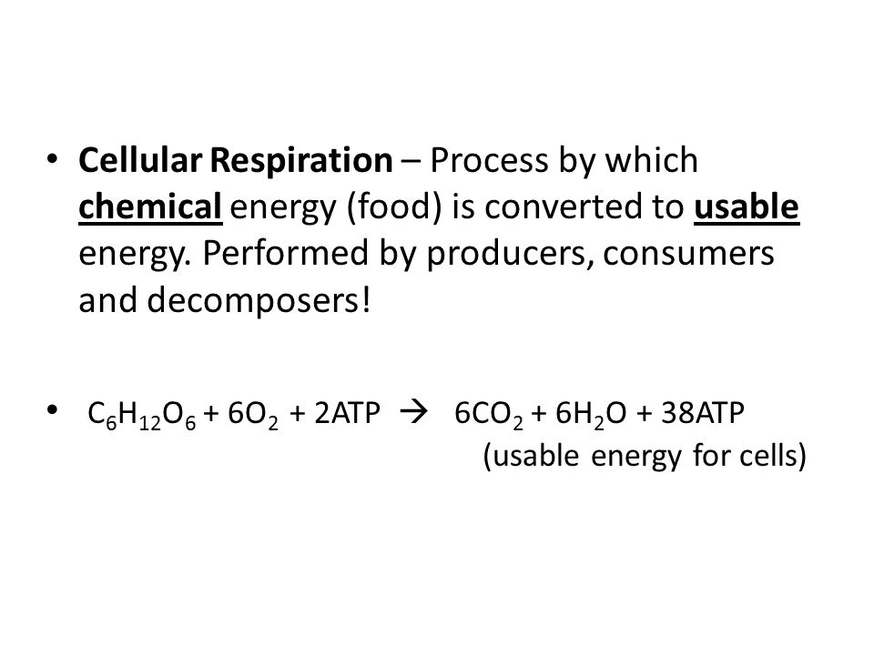 Cellular Respiration – Process by which chemical energy (food) is converted to usable energy. Performed by producers, consumers and decomposers!