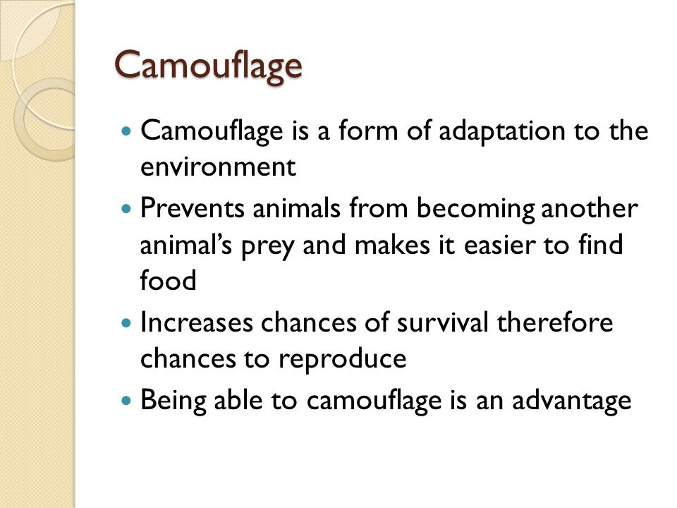 Camouflage Camouflage is a form of adaptation to the environment