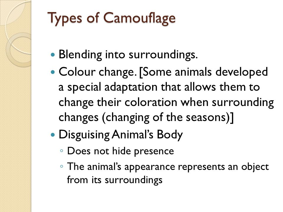 Types of Camouflage Blending into surroundings.