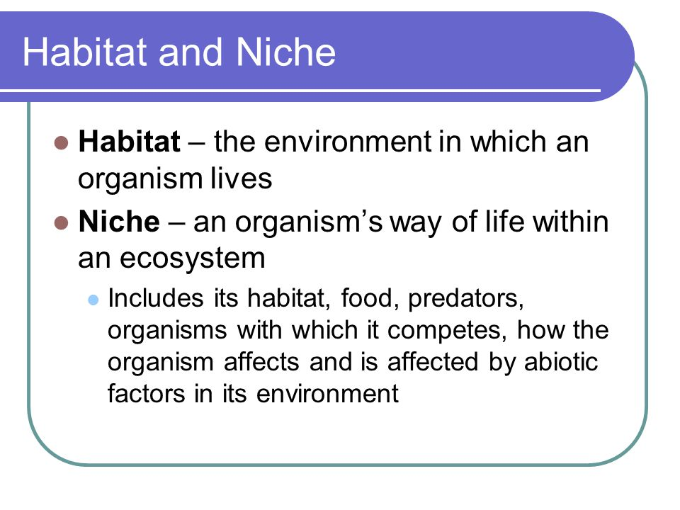 Habitat and Niche Habitat – the environment in which an organism lives