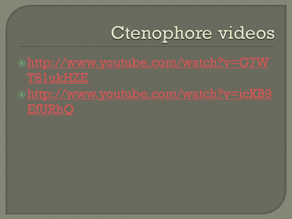 Ctenophore videos http://www.youtube.com/watch v=G7WT81ukHZE