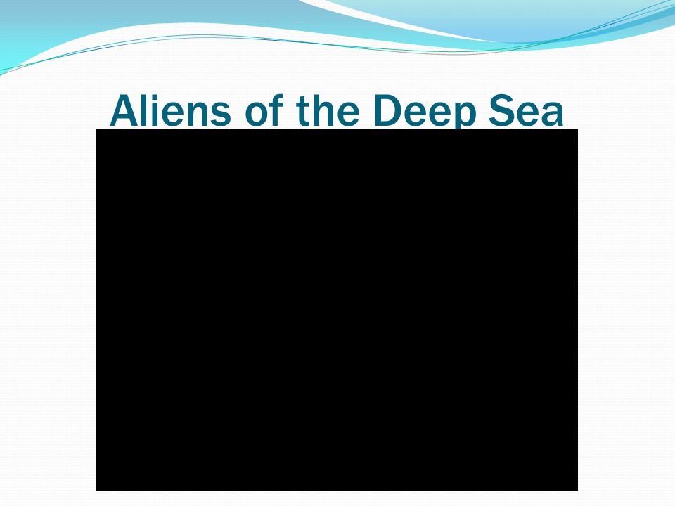 Aliens of the Deep Sea