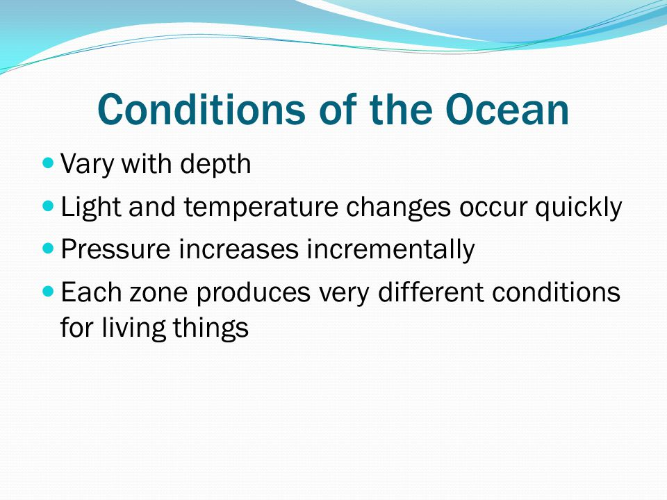 Conditions of the Ocean