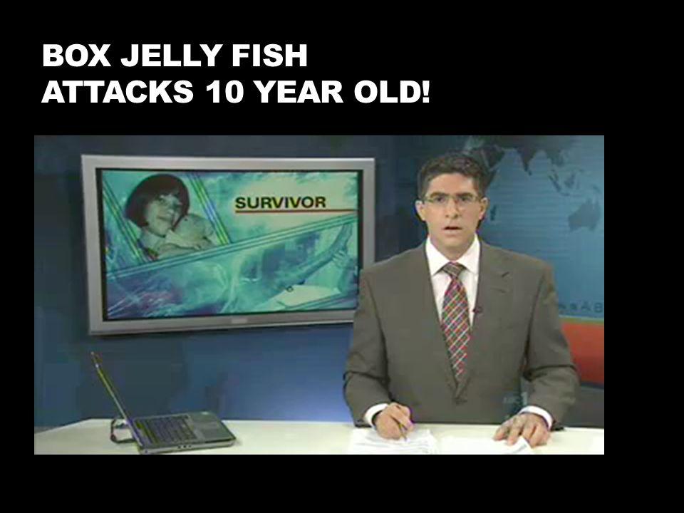 Box Jelly Fish Attacks 10 year old!
