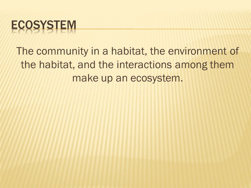 Ecosystem The community in a habitat, the environment of the habitat, and the interactions among them make up an ecosystem.