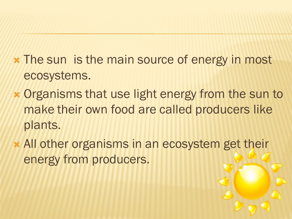 The sun is the main source of energy in most ecosystems.