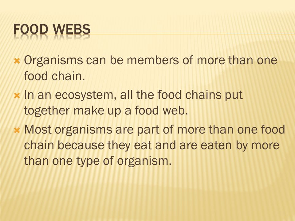 Food webs Organisms can be members of more than one food chain.